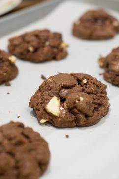 tripchoccookies_04